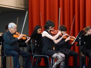 violon1